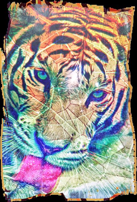 TIGER'S VIBE