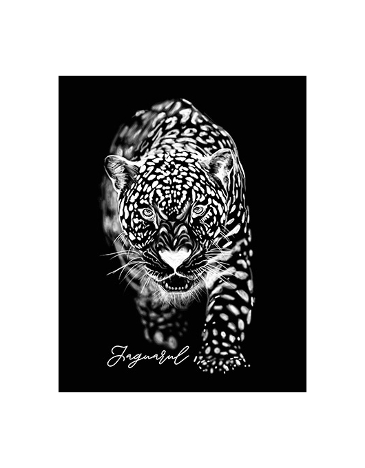 Jaguarul Alb