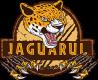 Jaguarul