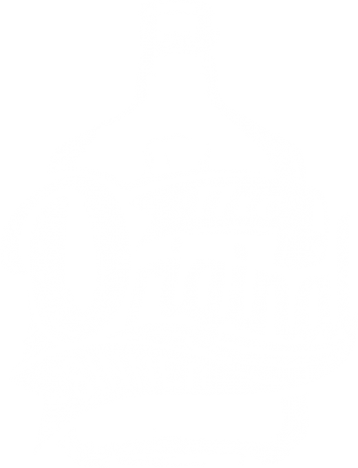 THE ORIGINAL SINNER