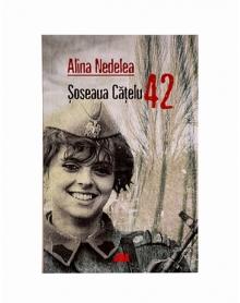Carte Soseaua Catelu 42