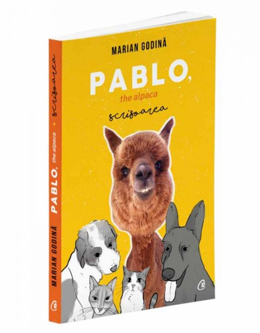 Carte PABLO the alpaca