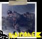 MAIDANEZII