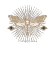 Vintage Moth #yosoyluna